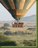 Tanzania Safari - Hot Air Balloon