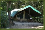 Kenya Maasi Mara - Governors Camp