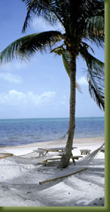 Kenia Adventures - Diani Beach