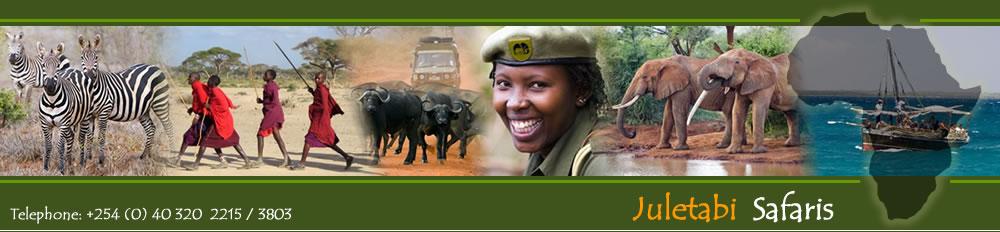 Kenya Safari -Juletabi