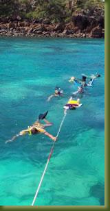 Kenya Adventures - Snorkelling
